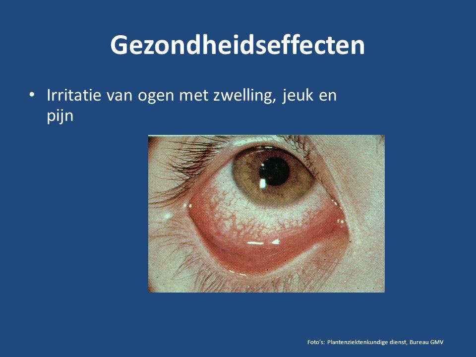 Gezondheidseffecten Irritatie van ogen met zwelling, jeuk en pijn