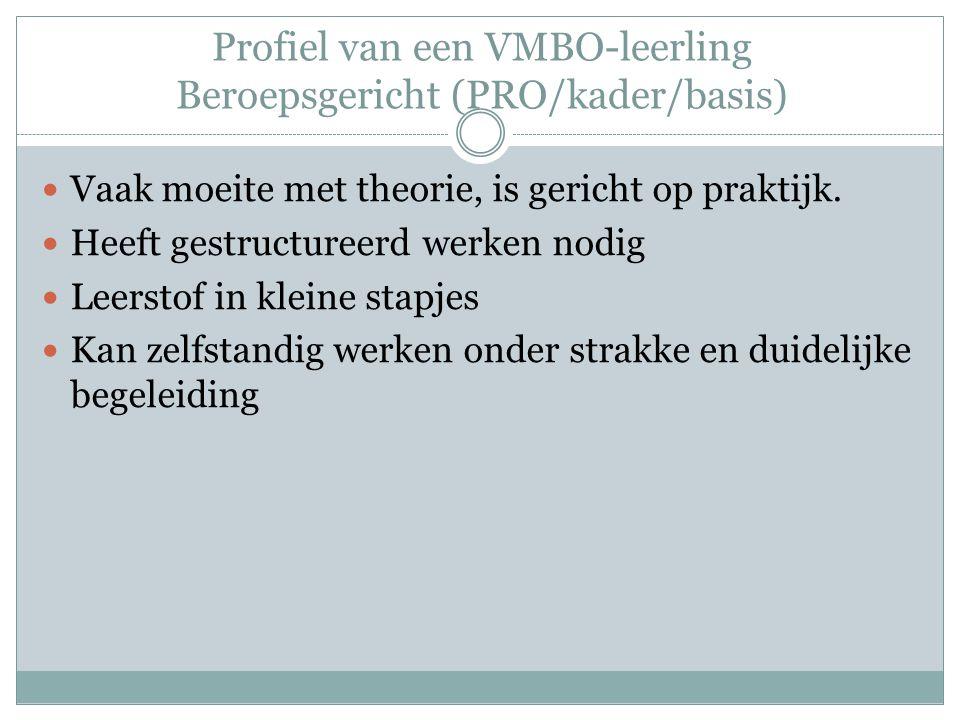 Profiel van een VMBO-leerling Beroepsgericht (PRO/kader/basis)