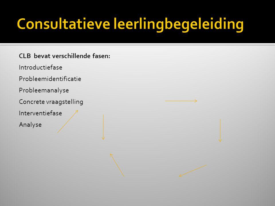 Consultatieve leerlingbegeleiding