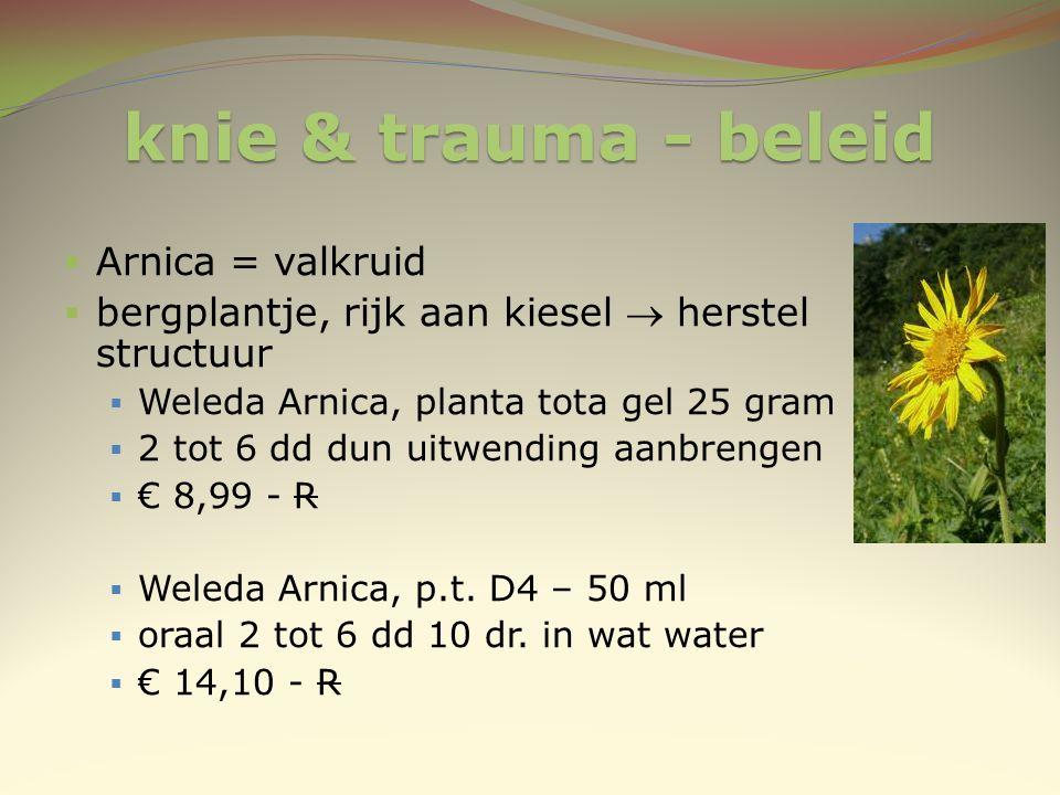 knie & trauma - beleid Arnica = valkruid