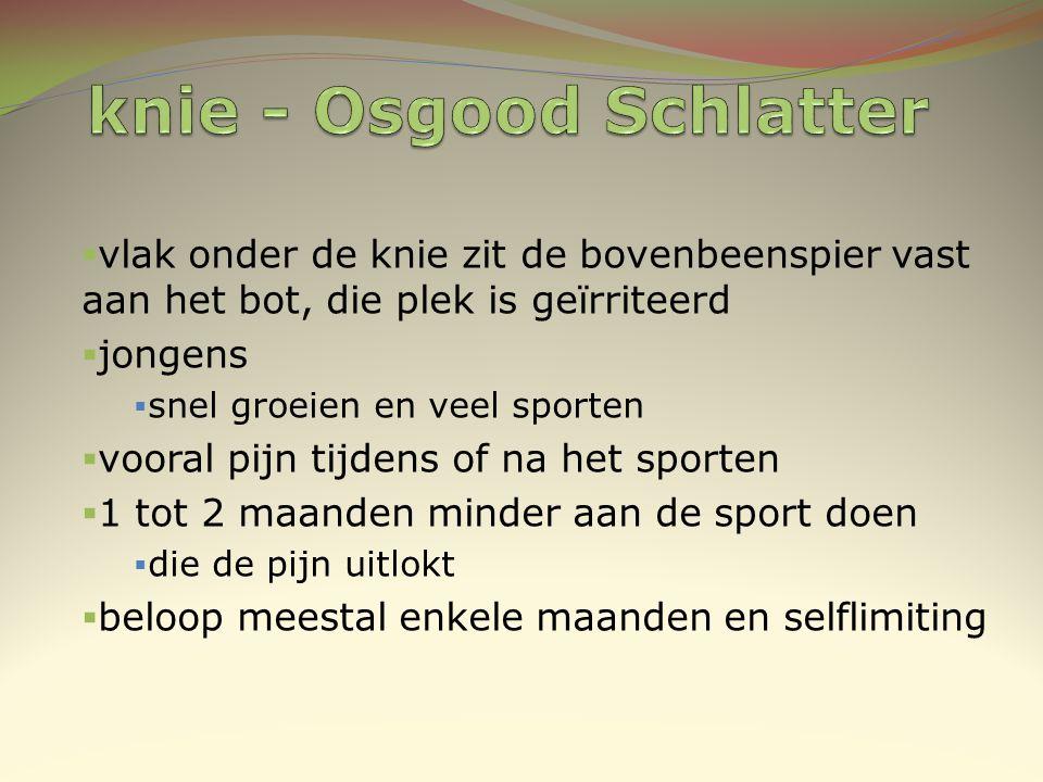 knie - Osgood Schlatter
