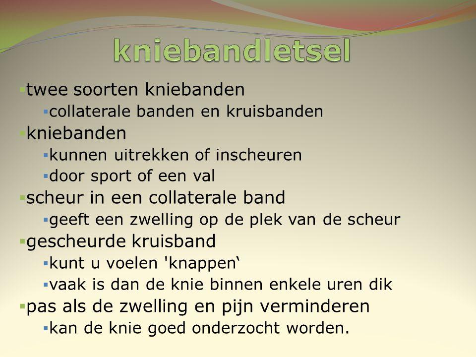 kniebandletsel twee soorten kniebanden kniebanden