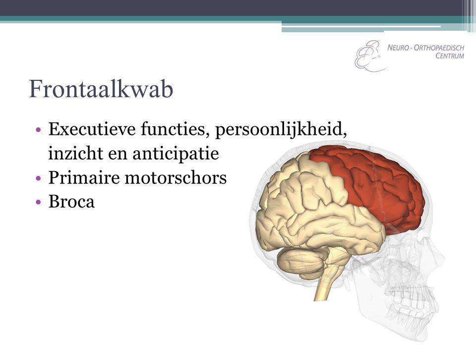 Frontaalkwab Executieve functies, persoonlijkheid,