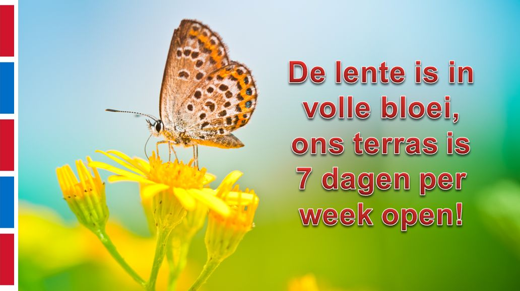 De lente is in volle bloei,