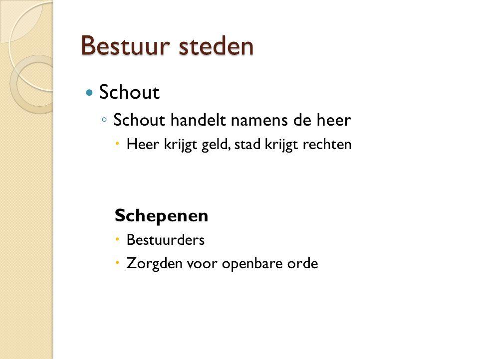 Bestuur steden Schout Schout handelt namens de heer Schepenen