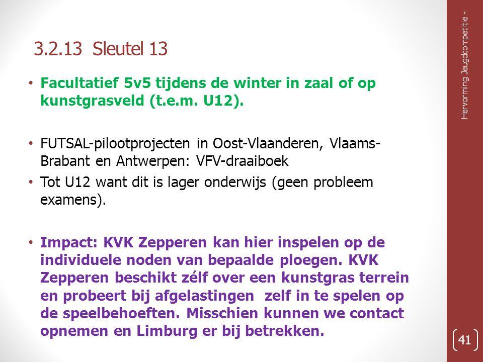 3.2.13 Sleutel 13 Facultatief 5v5 tijdens de winter in zaal of op kunstgrasveld (t.e.m. U12).