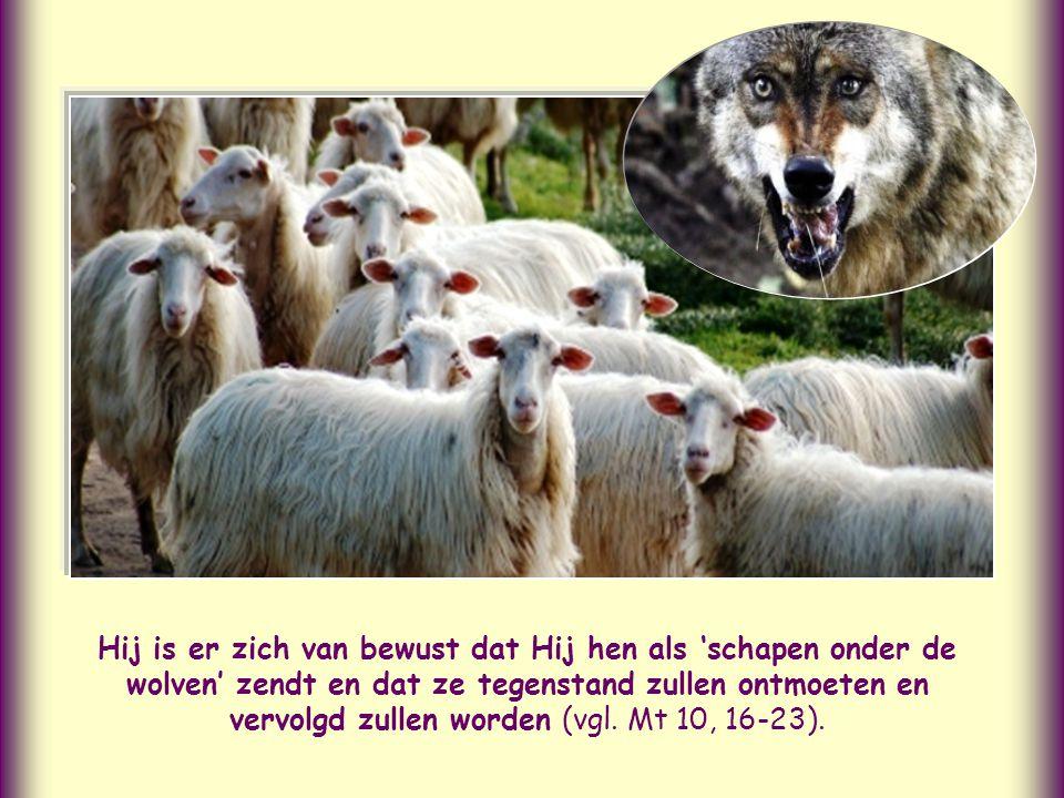 Hij is er zich van bewust dat Hij hen als 'schapen onder de wolven' zendt en dat ze tegenstand zullen ontmoeten en vervolgd zullen worden (vgl.