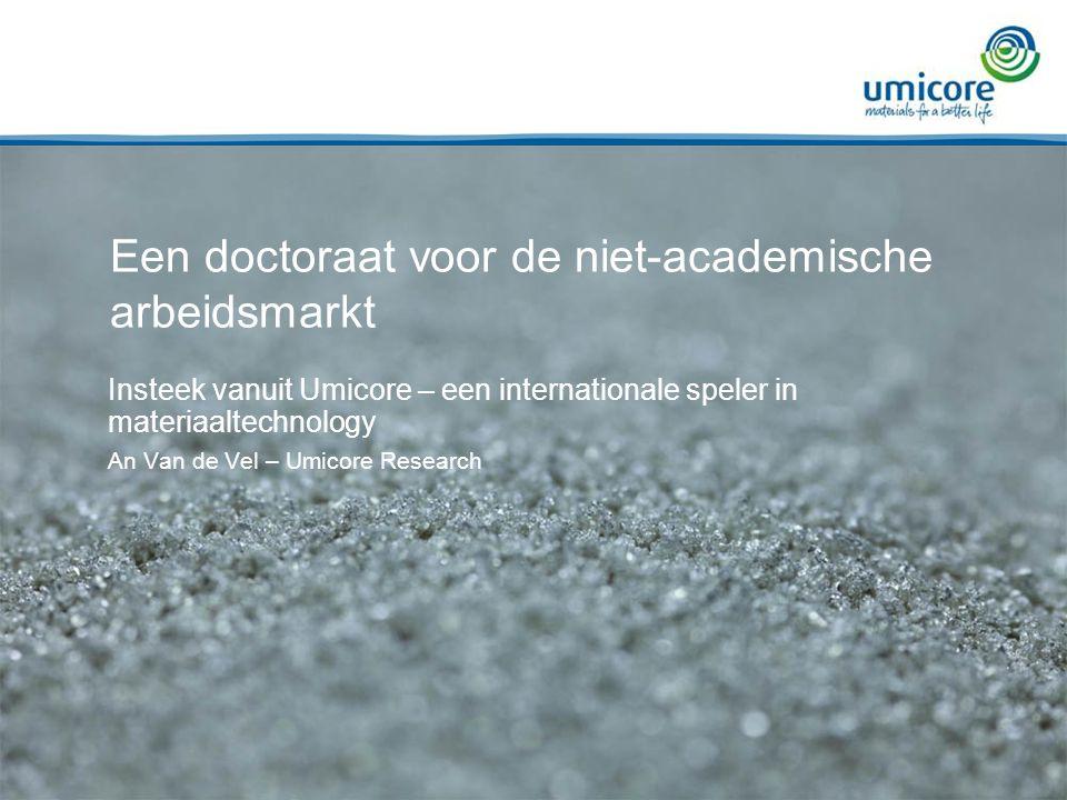 Een doctoraat voor de niet-academische arbeidsmarkt