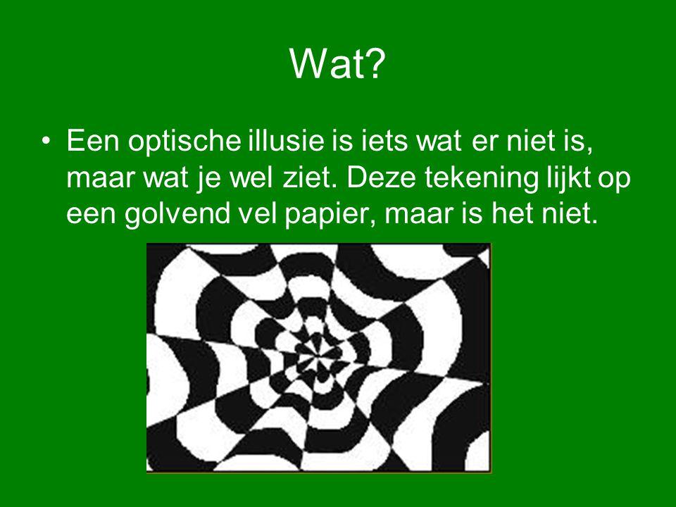 Wat. Een optische illusie is iets wat er niet is, maar wat je wel ziet.