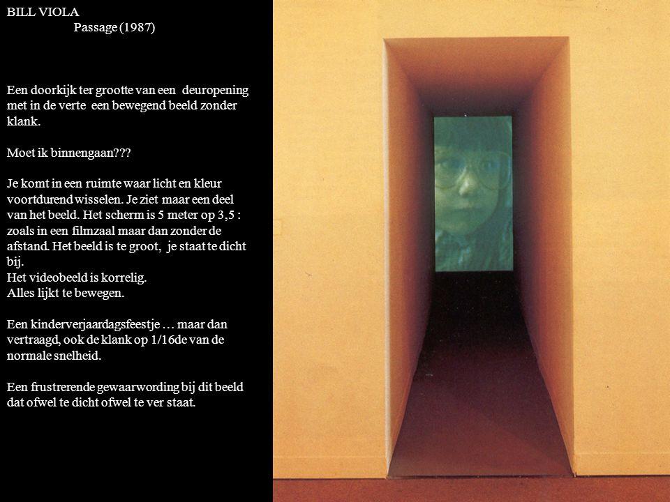 BILL VIOLA Passage (1987) Een doorkijk ter grootte van een deuropening met in de verte een bewegend beeld zonder klank.