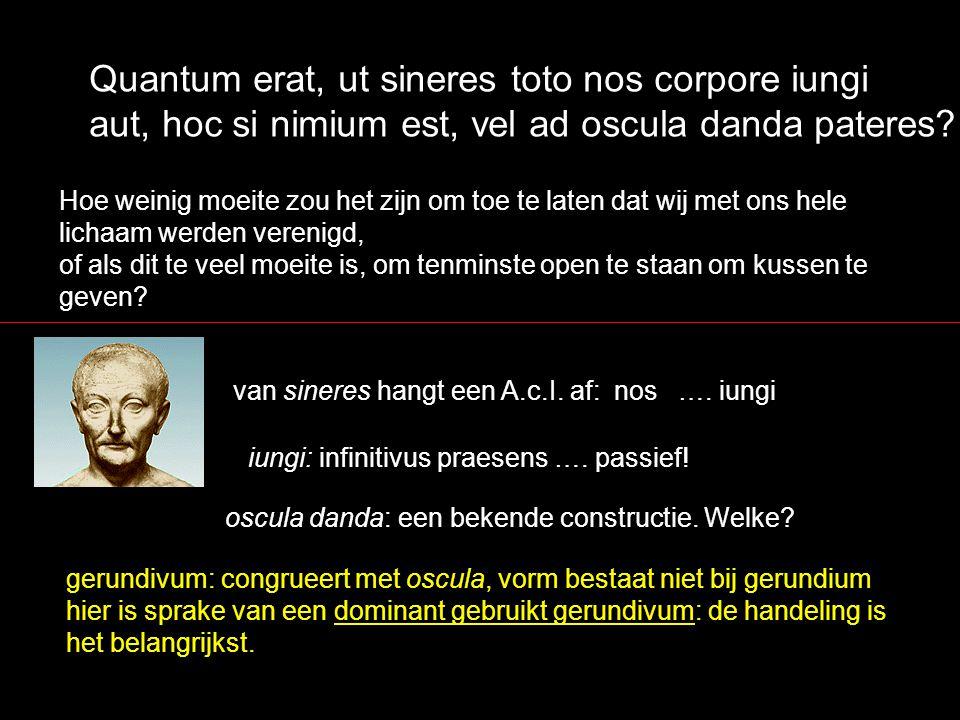Quantum erat, ut sineres toto nos corpore iungi aut, hoc si nimium est, vel ad oscula danda pateres