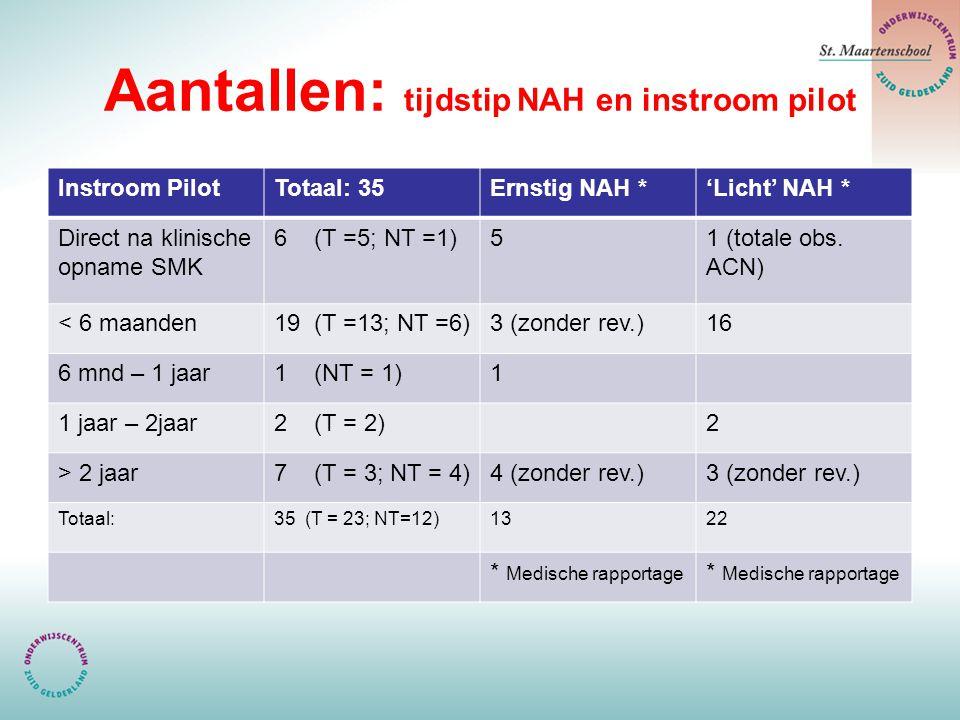 Aantallen: tijdstip NAH en instroom pilot