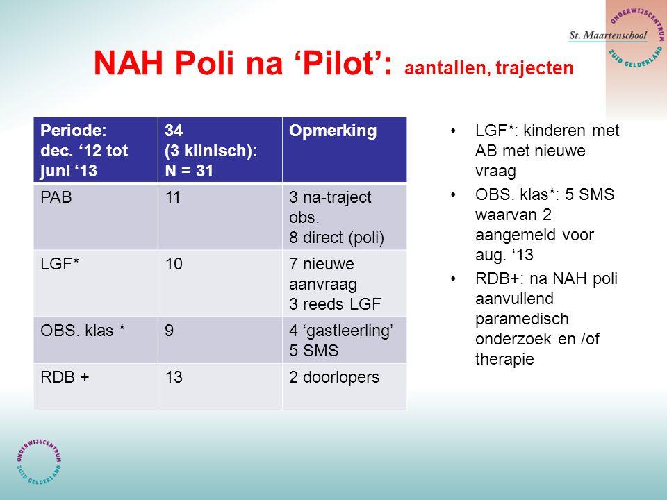 NAH Poli na 'Pilot': aantallen, trajecten