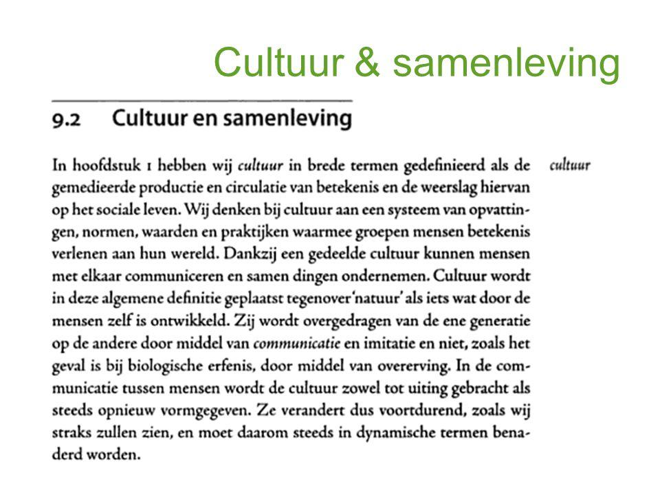 Cultuur & samenleving