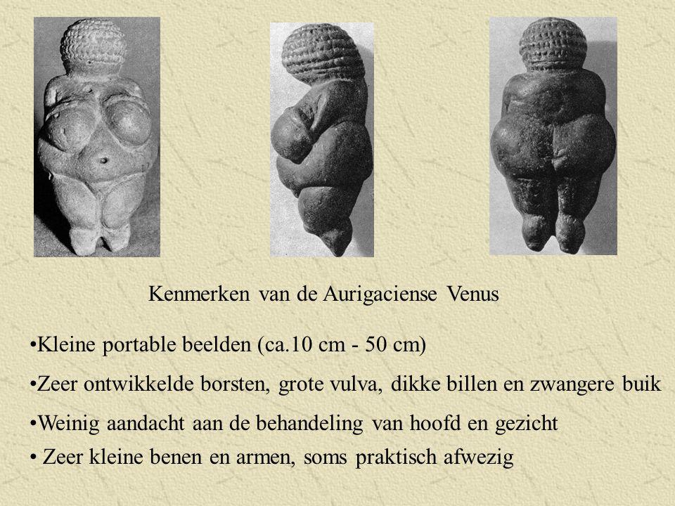 Kenmerken van de Aurigaciense Venus