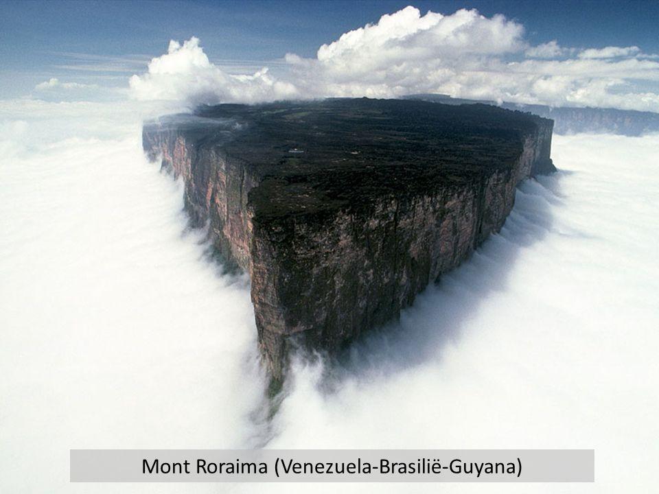 Mont Roraima (Venezuela-Brasilië-Guyana)