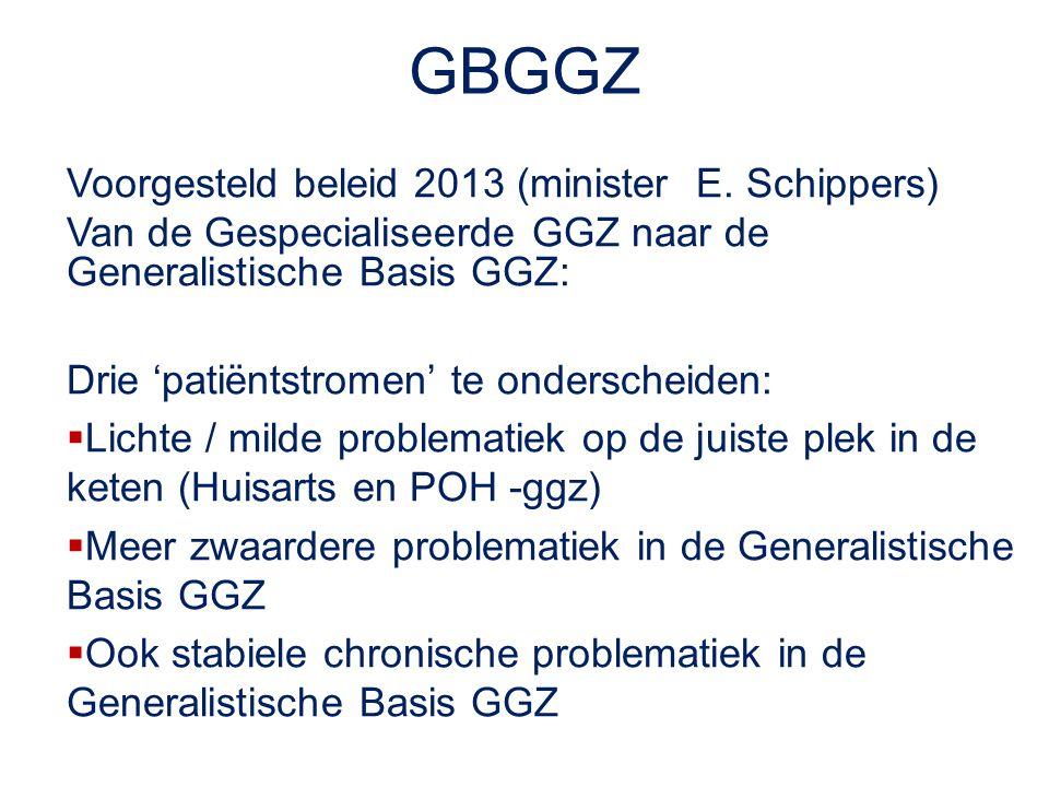 GBGGZ Voorgesteld beleid 2013 (minister E. Schippers)