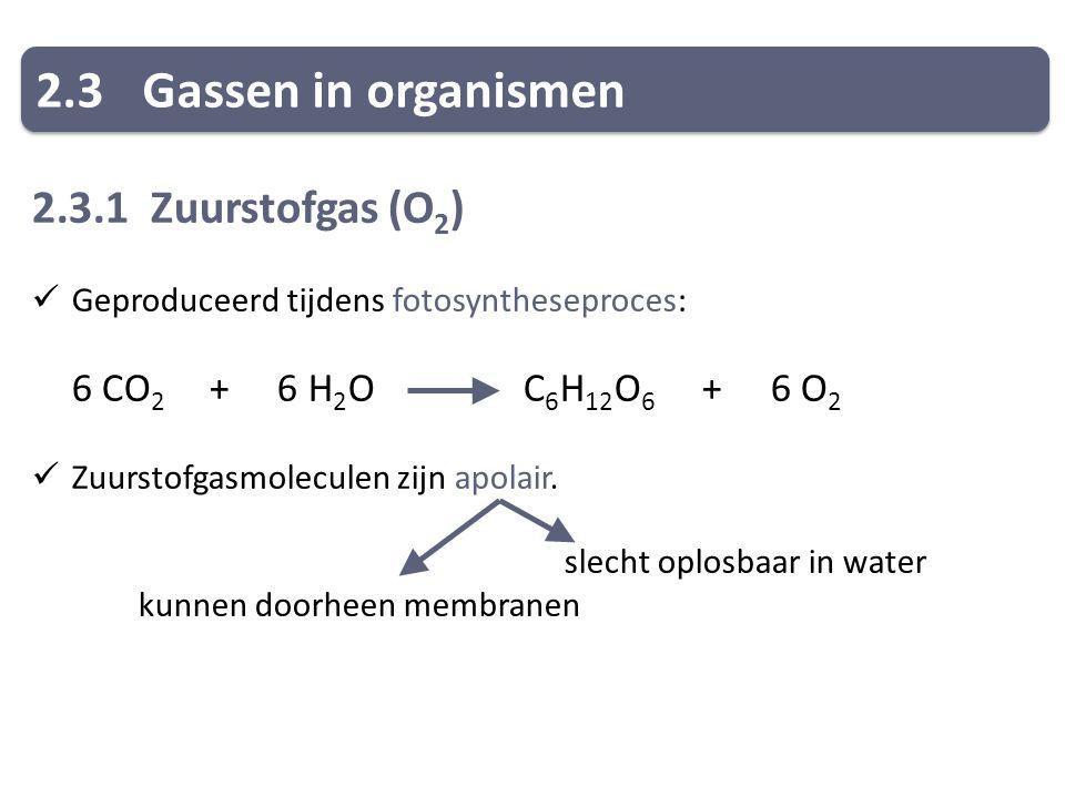 2.3 Gassen in organismen 2.3.1 Zuurstofgas (O2)