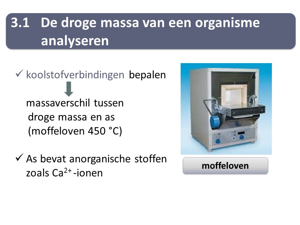 3.1 De droge massa van een organisme analyseren