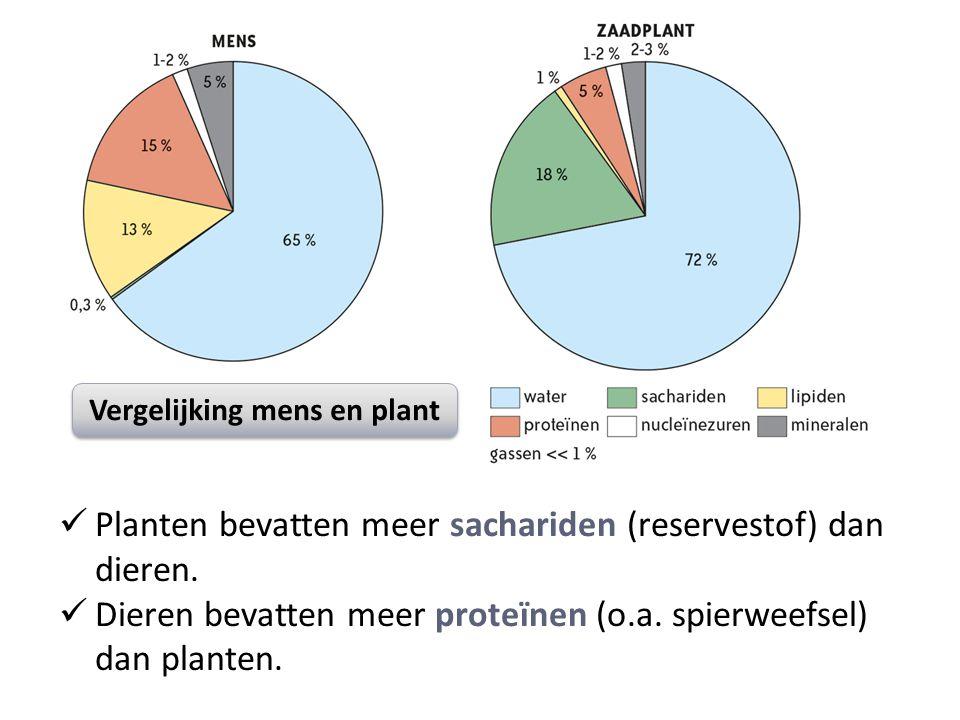 Vergelijking mens en plant