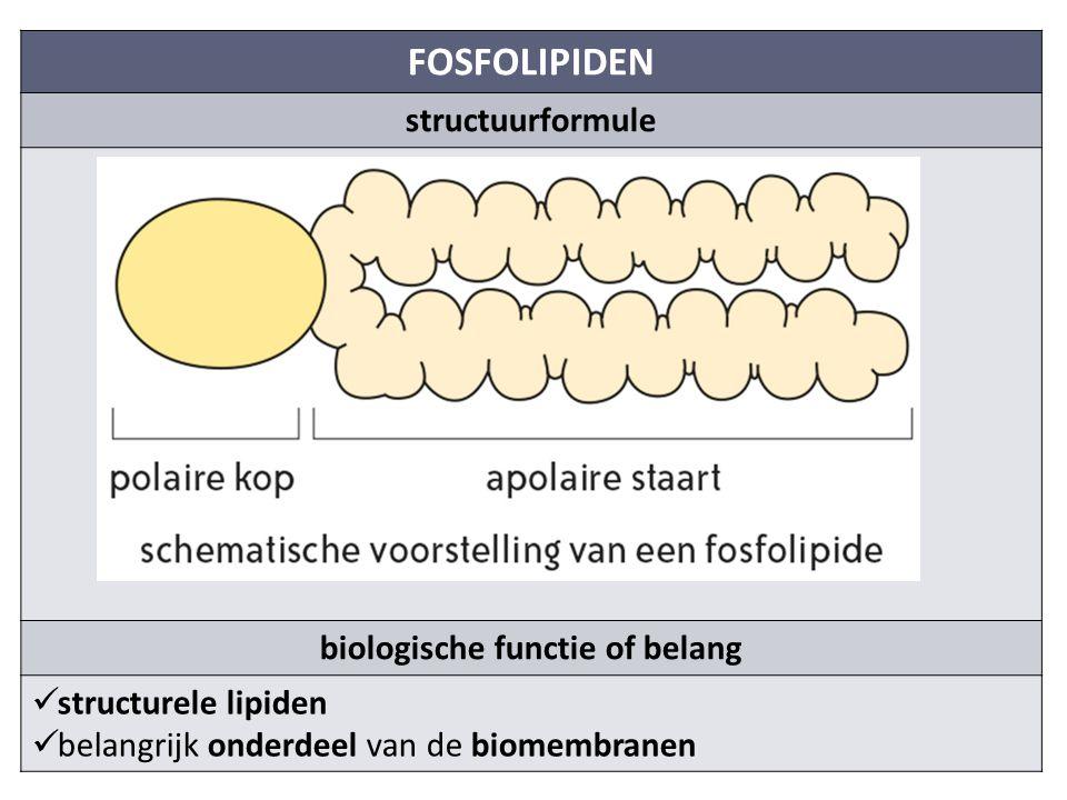 biologische functie of belang