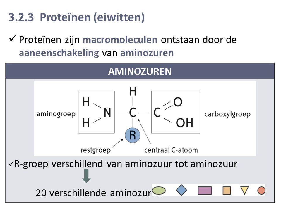 3.2.3 Proteïnen (eiwitten) Proteïnen zijn macromoleculen ontstaan door de aaneenschakeling van aminozuren.