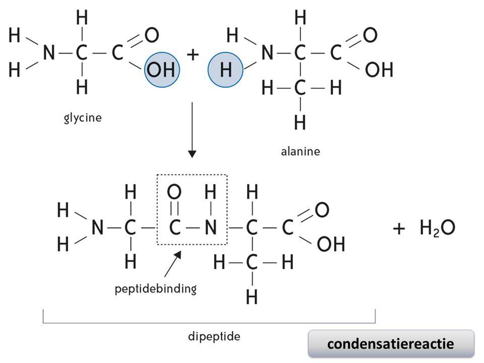 condensatiereactie