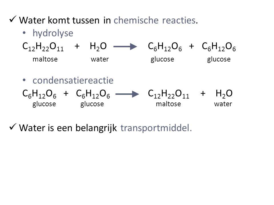 Water komt tussen in chemische reacties. hydrolyse