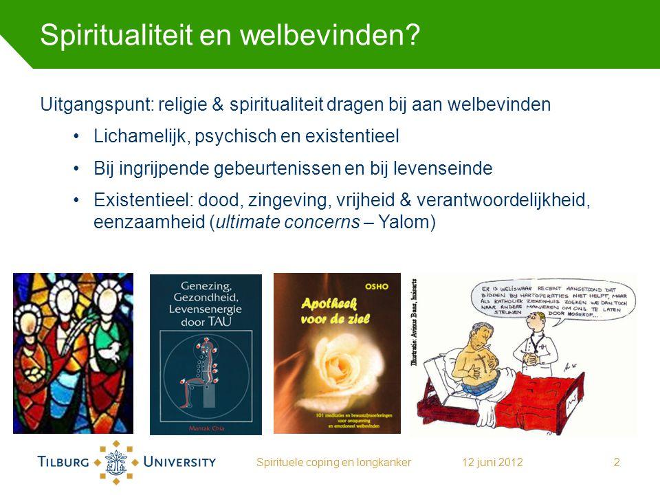 Spiritualiteit en welbevinden