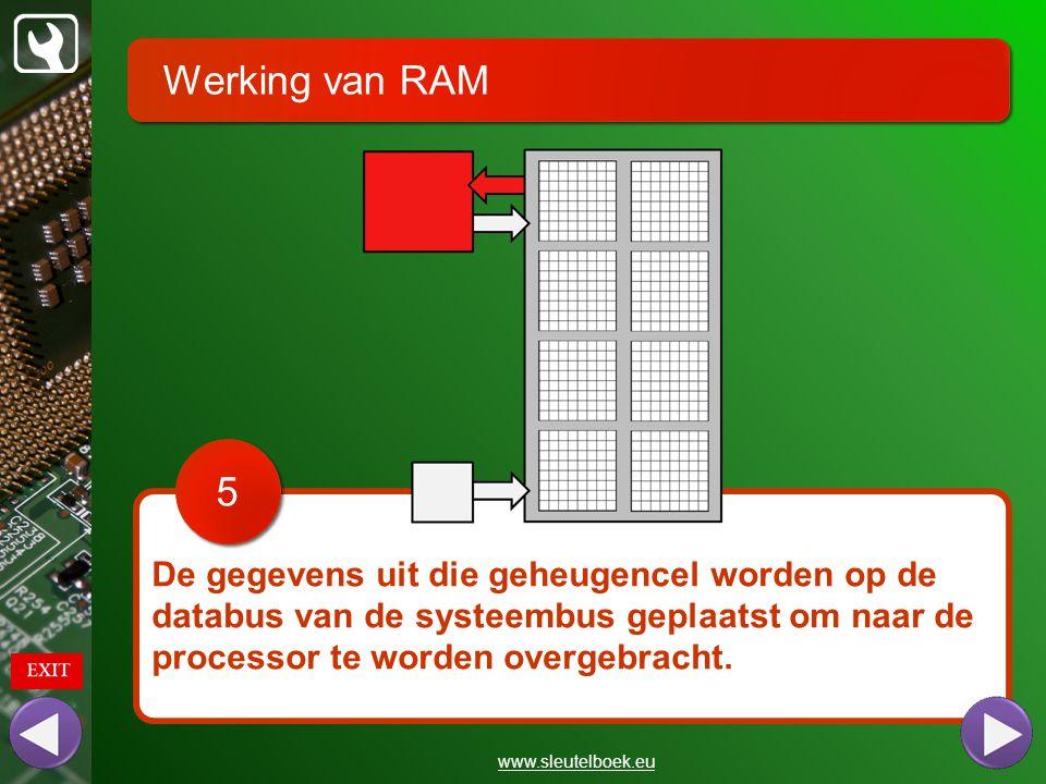 Werking van RAM 5. De gegevens uit die geheugencel worden op de databus van de systeembus geplaatst om naar de processor te worden overgebracht.