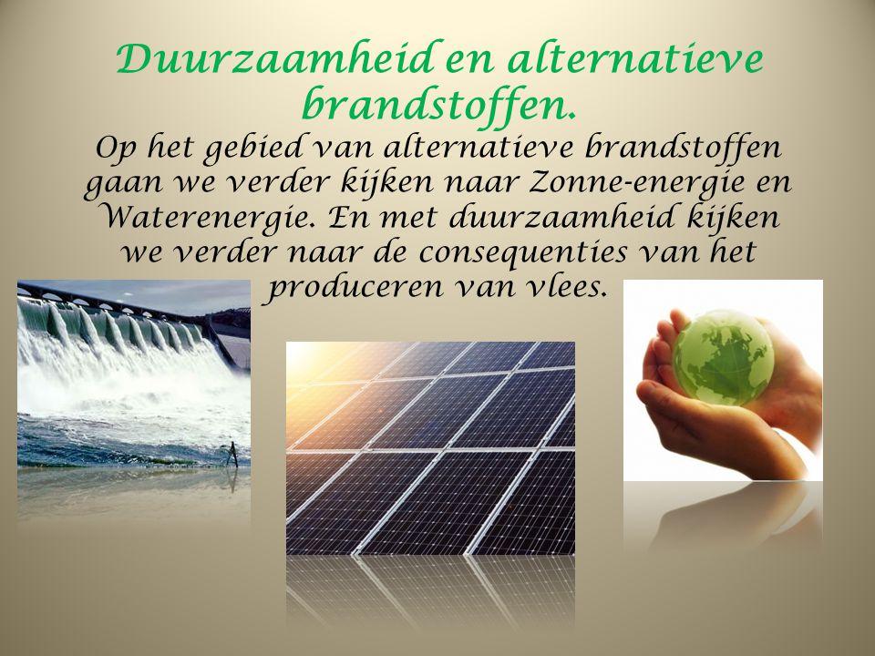 Duurzaamheid en alternatieve brandstoffen