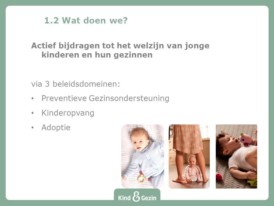 1.2 Wat doen we Actief bijdragen tot het welzijn van jonge kinderen en hun gezinnen. via 3 beleidsdomeinen: