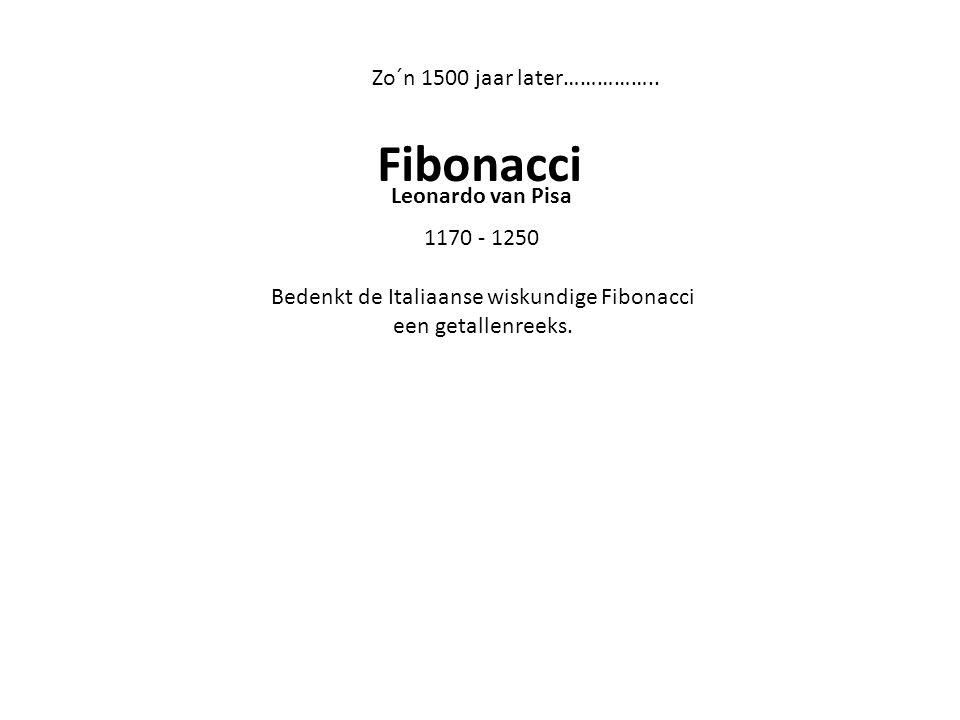 Bedenkt de Italiaanse wiskundige Fibonacci een getallenreeks.