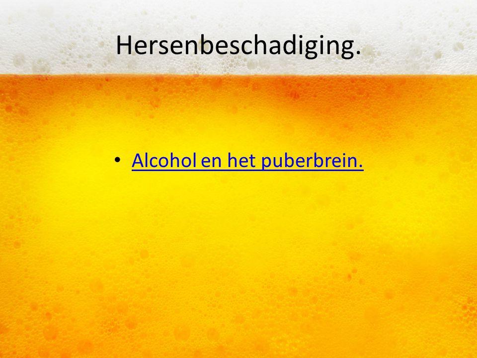 Alcohol en het puberbrein.