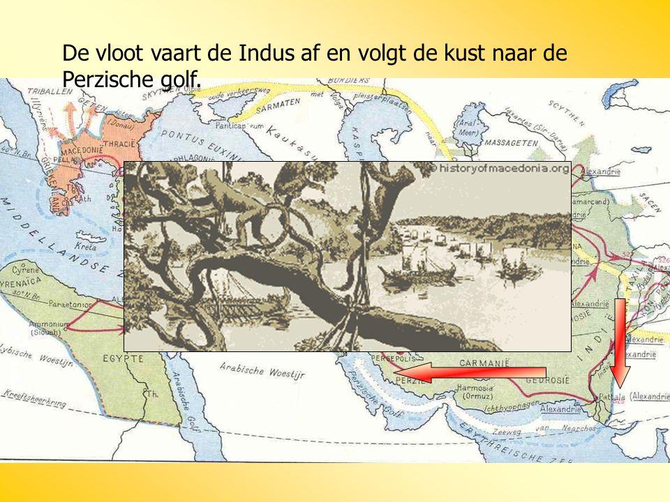 De vloot vaart de Indus af en volgt de kust naar de Perzische golf.