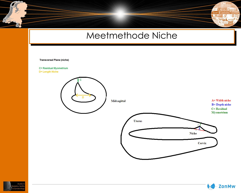 Meetmethode Niche Ook transversaal meten gezien risico op blaasperforatie indien RMM < 3mm blijkt te zijn en je toch een hysteroscopie gaat doen.