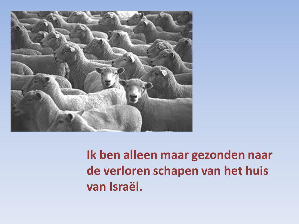 Ik ben alleen maar gezonden naar de verloren schapen van het huis van Israël.