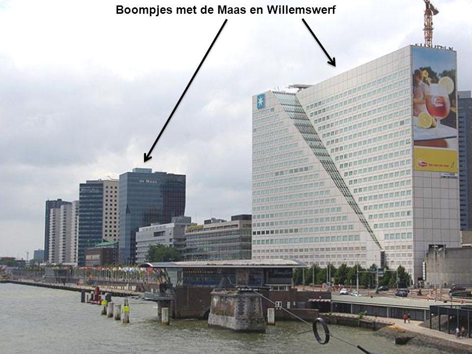 Boompjes met de Maas en Willemswerf