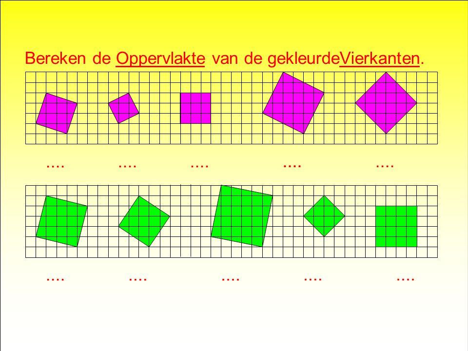 Bereken de Oppervlakte van de gekleurdeVierkanten.