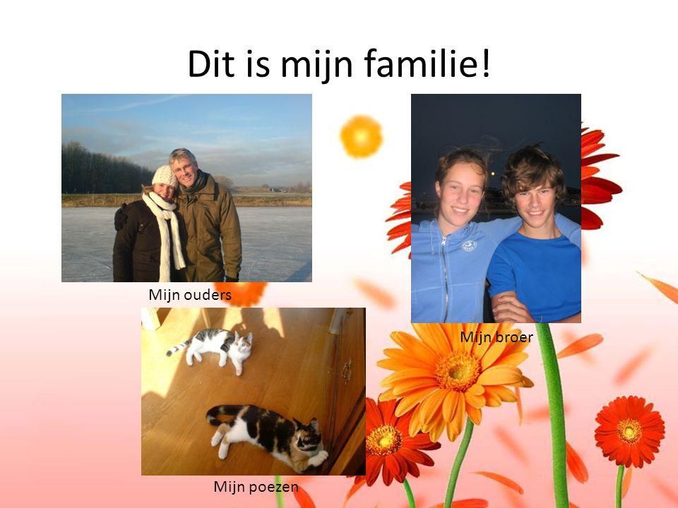Dit is mijn familie! Mijn ouders Mijn broer Mijn poezen