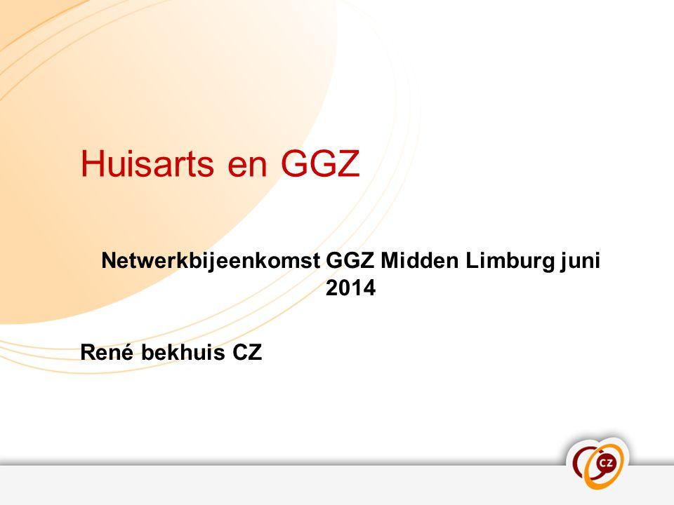 Netwerkbijeenkomst GGZ Midden Limburg juni 2014 René bekhuis CZ