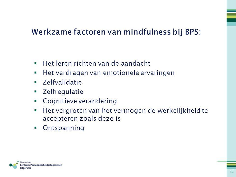 Werkzame factoren van mindfulness bij BPS: