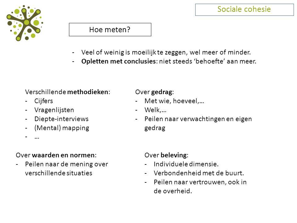 Sociale cohesie Hoe meten