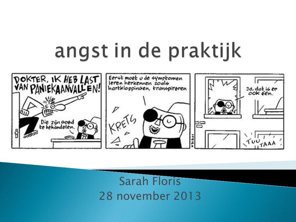 angst in de praktijk Sarah Floris 28 november 2013