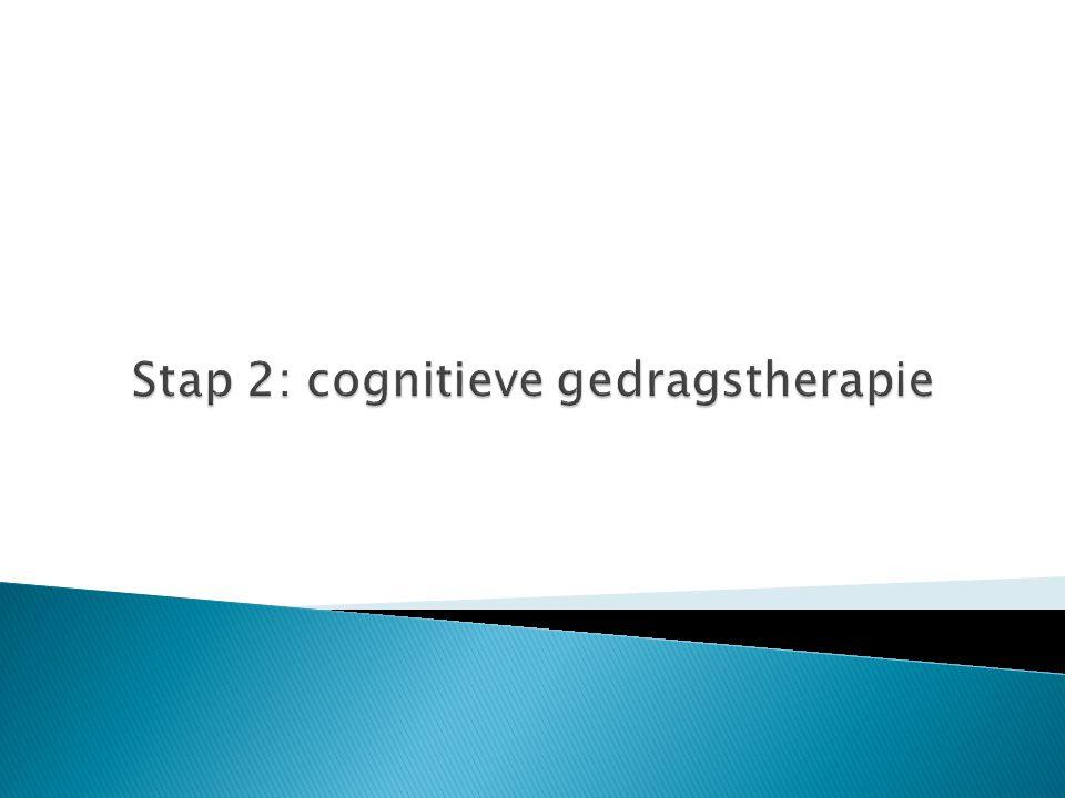 Stap 2: cognitieve gedragstherapie