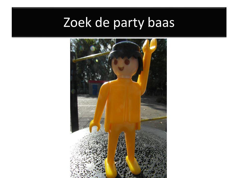 Zoek de party baas