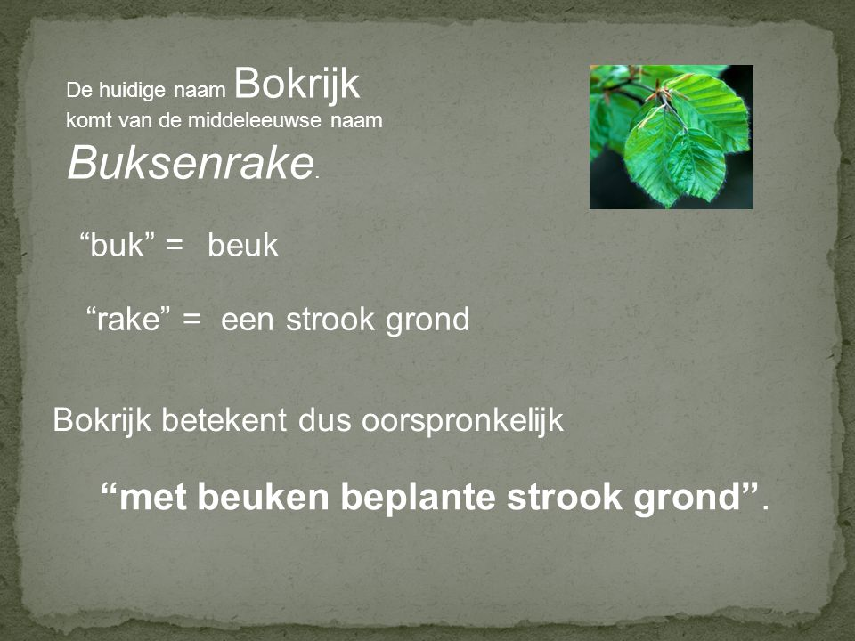 Buksenrake. met beuken beplante strook grond . buk = beuk rake =
