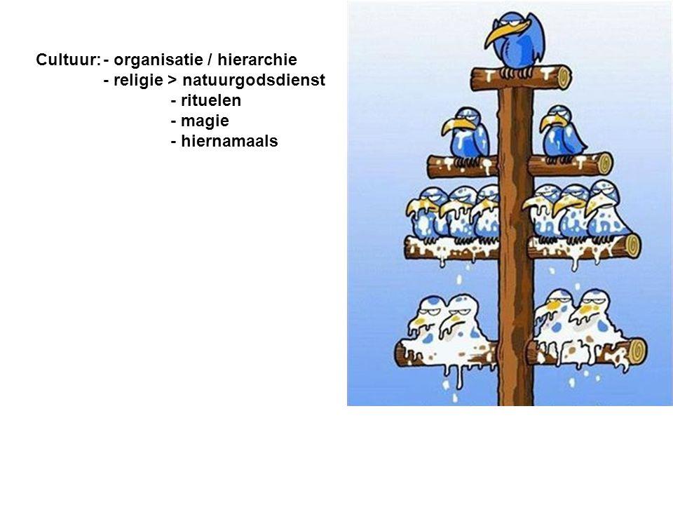 Cultuur:. - organisatie / hierarchie. - religie > natuurgodsdienst
