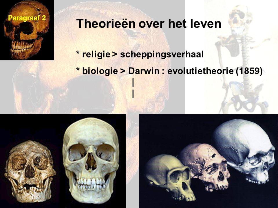 Theorieën over het leven