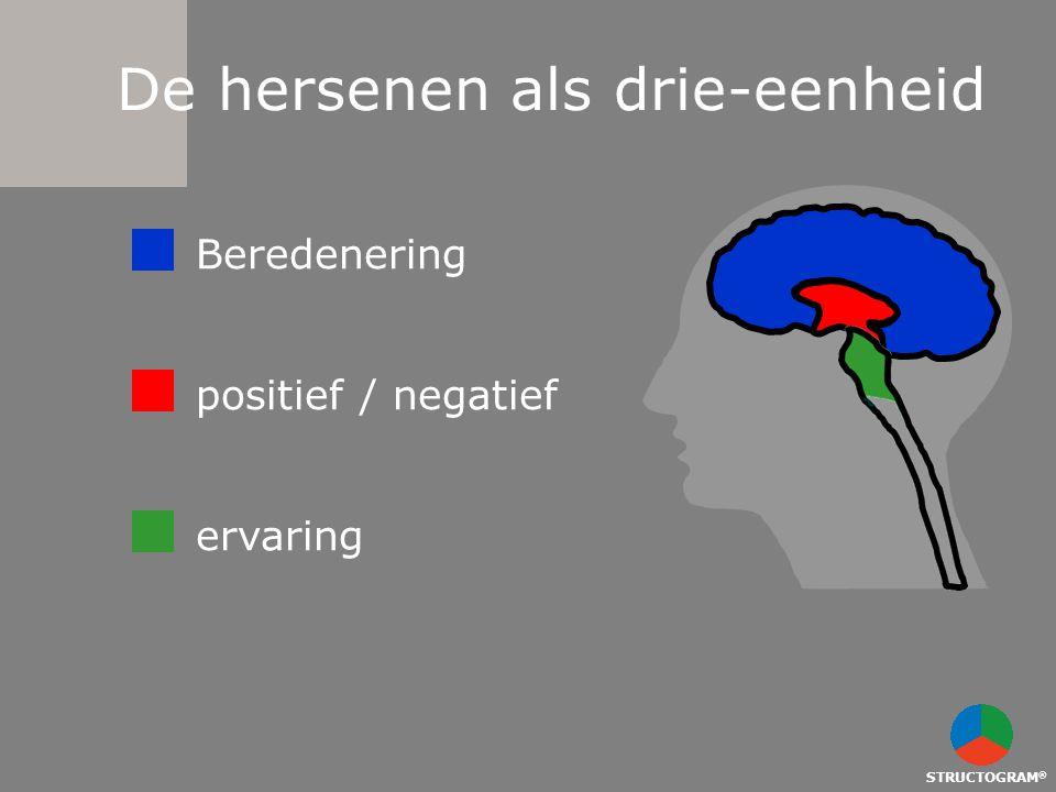 De hersenen als drie-eenheid